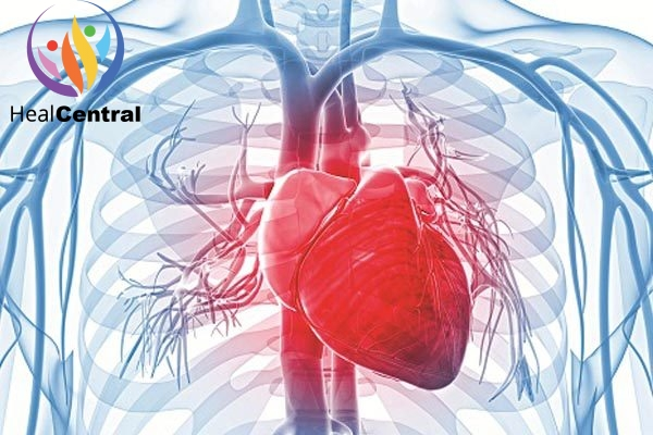 Neurocard plus hỗ trợ tăng cường hệ tim mạch