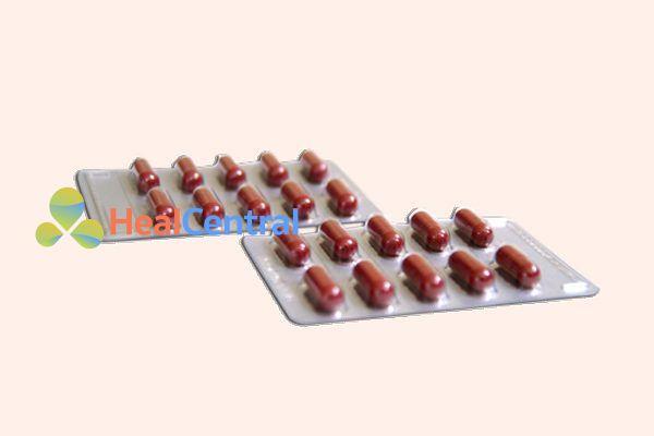 Vỉ thuốc Mediphylamin