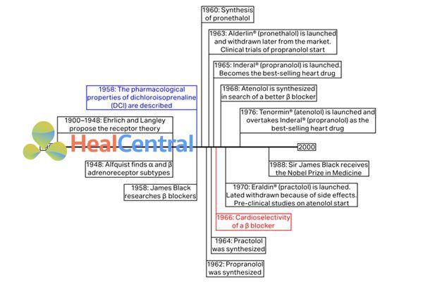 Quá trình phát triển các thuốc chẹn β-adrenergic.