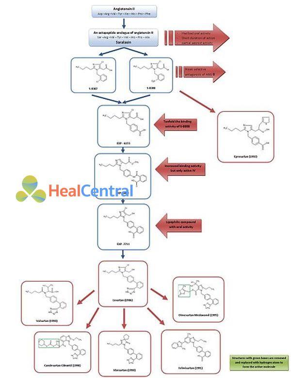 Sự phát triển các thuốc nhóm ARBs.