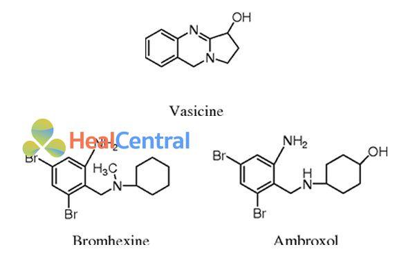 Vasicine và các dẫn xuất bán tổng hợp của nó.