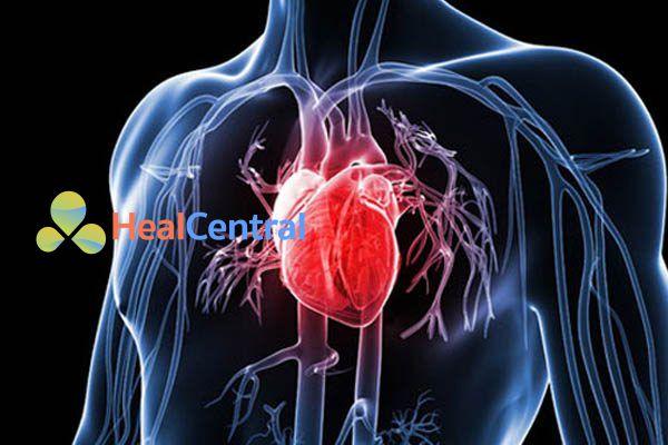 Cẩn thận dùng nifedipine với bệnh nhân bị bệnh tim mạch