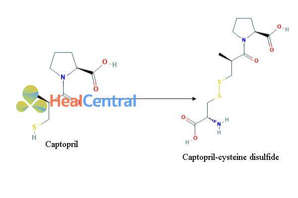 Chuyển hóa captopril