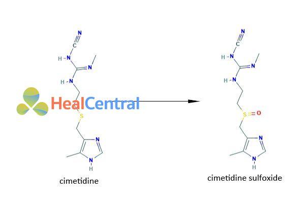 Chuyển hóa của Cimetidine