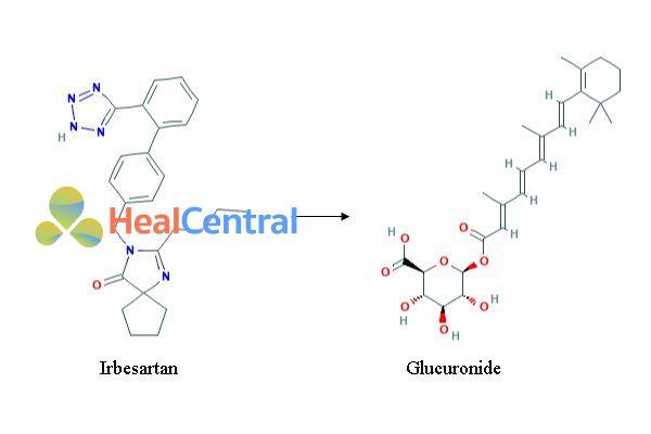 Chuyển hóa của irbesartan