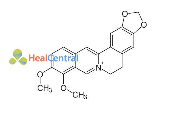Cấu trúc hóa học của berberine.
