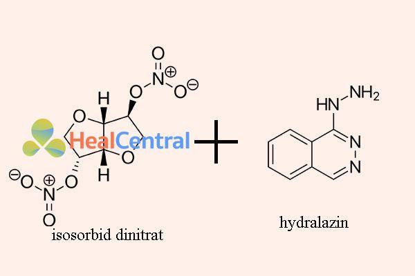 Kết hợp isosorbid dinitrat với hydralazin