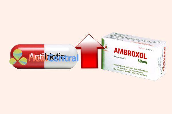 Tương tác thuốc ambroxol và khang_sinh