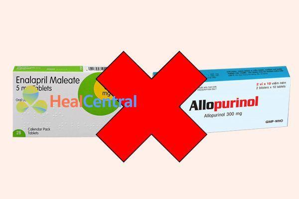 Tương tác thuốc enalapril và allopurinol