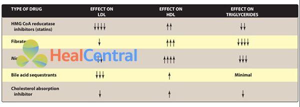 Đặc điểm các thuốc hạ lipid máu