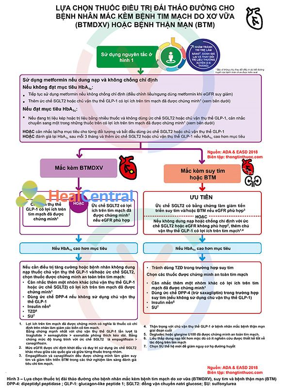Lựa chọn thuốc đái tháo đường theo ADA 2018