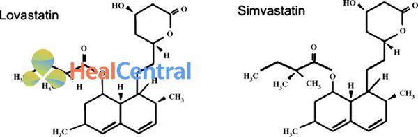 Cấu trúc hóa học của Simvastatin và Lovastatin