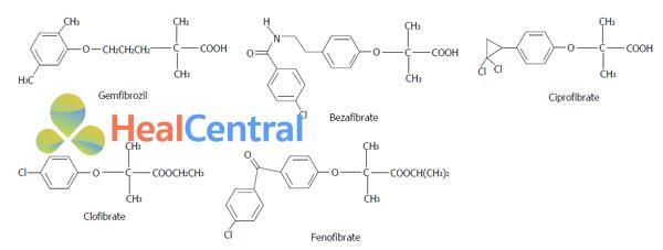 Cấu trúc hóa học một số Fibrates