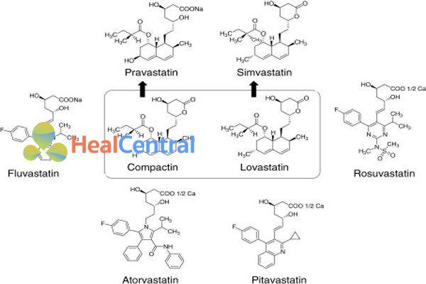 Compactin và các statin được thương mại hóa