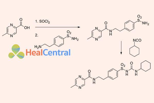 con đường tổng hợp glipizid