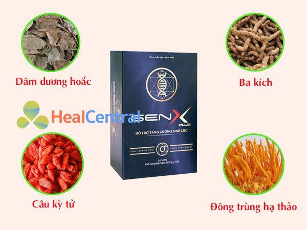 Các thảo dược chính có trong Gen X