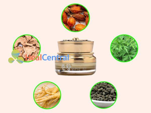 Các thành phần chính của kem trị sẹo Genie Junwang Fix Skin