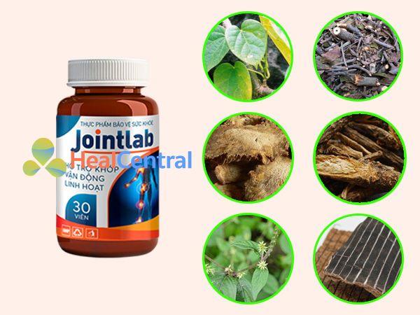 Các thành phần thảo dược có trong Jointlab