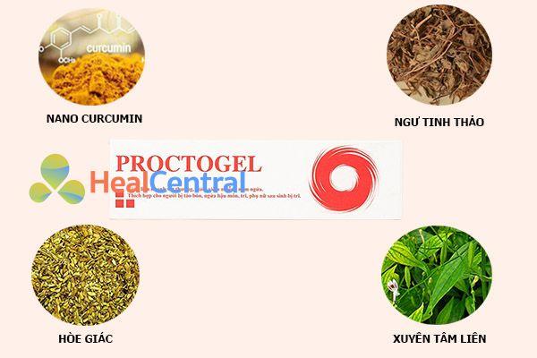 Các thành phần chính của Proctogel