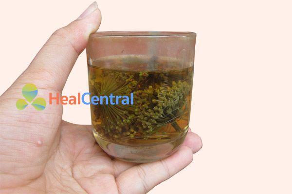 Cách uống trà hoa tam thất