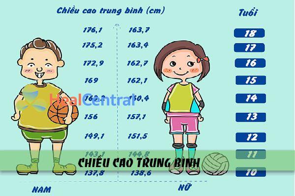 Chiều cao trung bình của người Việt Nam độ tuổi từ 10-18