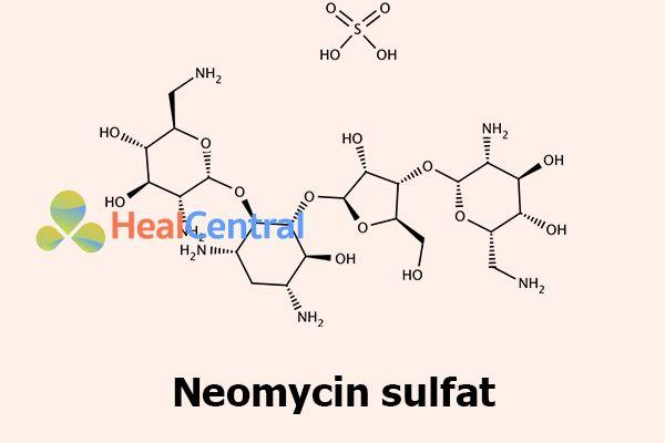 Công thức hóa học của Neomycin Sulfat