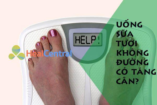 Lựa chọn loại sữa tươi có hàm lượng chất béo cao để tăng cân