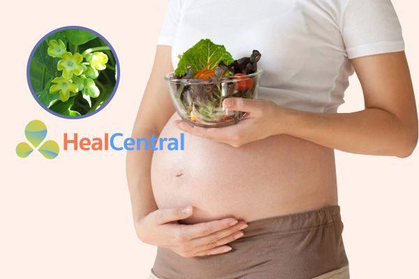Phụ nữ có thai có thể ăn được hoa thiên lý