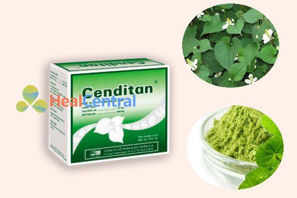 Thành phần chính của sản phẩm Cenditan