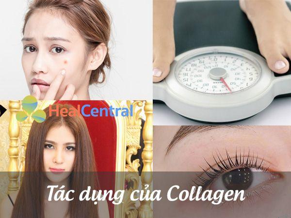 Tác dụng của viên uống Collagen