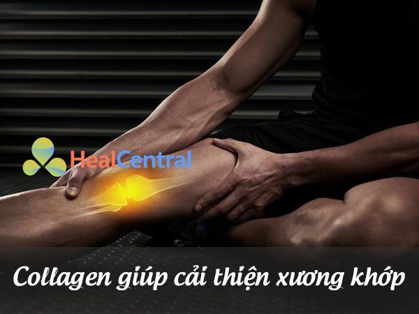 Collagen giúp cải thiện xương khớp