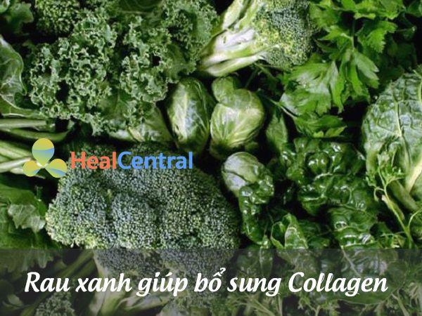 Các loại rau xanh có thể cung cấp thêm Collagen
