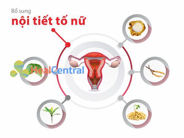 Các thành phần chính của Tố nữ Nhất Nhất
