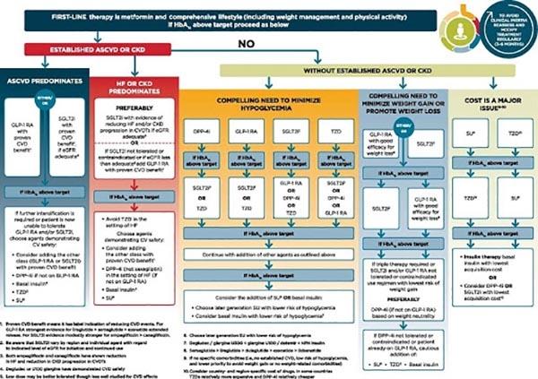 Phác đồ điều trị Đái tháo đường type 2 theo ADA 2020