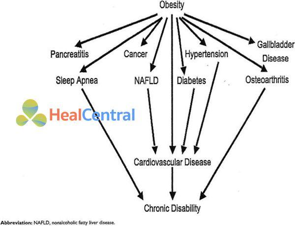 Ảnh: Mối liên quan giữa béo phì và các bệnh mắc kèm khác.