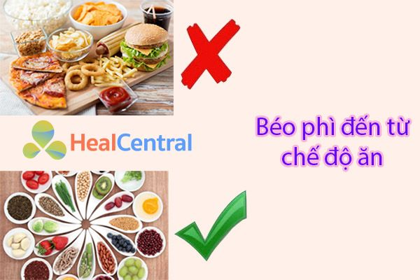 Nguy cơ hàng đầu gây béo phì đến từ chế độ ăn uống