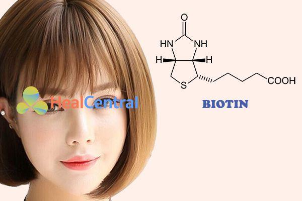 Biotin là thành phần thường thấy trong các sản phẩm dưỡng tóc