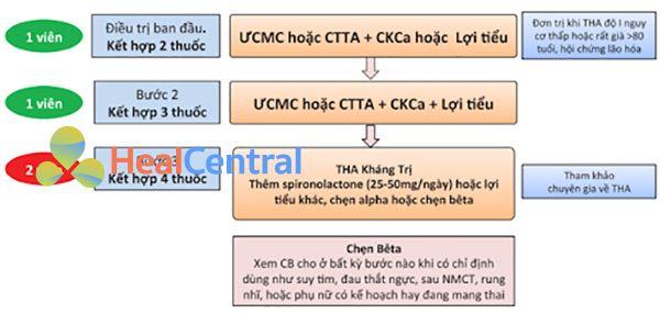 Hình 7. Chiến lược phối hợp thuốc điều trị tăng huyết áp không biến chứng, tăng huyết áp có tổn thương cơ quan đích, đái tháo đường, bệnh lý mạch máu não hoặc bệnh động mạch ngoại biên. THA: tăng huyết áp, ƯCMC: ức chế men chuyển, CTTA: chẹn thụ thể angiotensin, CKCa: chẹn kênh calcium, CB: chẹn β giao cảm, NMCT: nhồi máu cơ tim. Chẹn β giao cảm là thuốc hàng 1 nhưng có xu hướng ưu tiên dùng khi có chỉ định bắt buộc. Ưu tiên dùng viên phối hợp cố định liều để tăng tuân thủ điều trị. Chống chỉ định phối hợp thuốc ức chế men chuyển và thuốc chẹn thụ thể angiotensin.