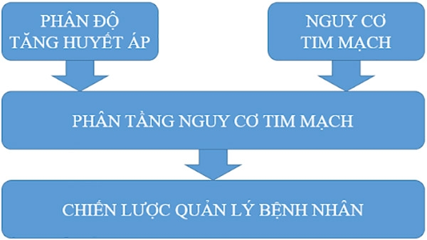 Hình 1. Các bước tiến hành để quản lý bệnh nhân.