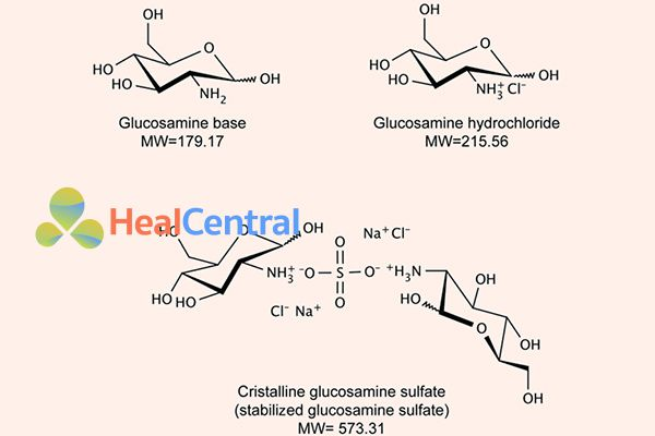 Cấu trúc của Glucosamin, Glucosamin hydrochlorid và Glucosamin Sulfat tinh thể