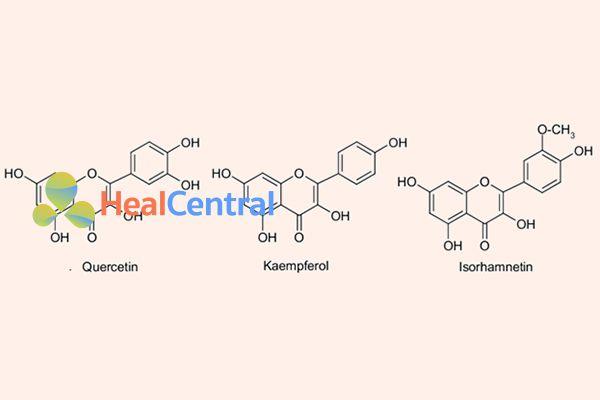Cấu trúc hóa học của 3 hợp chất flavonoid chính trong lá bạch quả