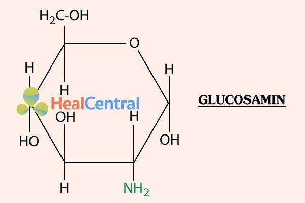 Cấu trúc hóa học của Glucosamin