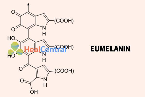 Công thức hóa học của Eumelanin