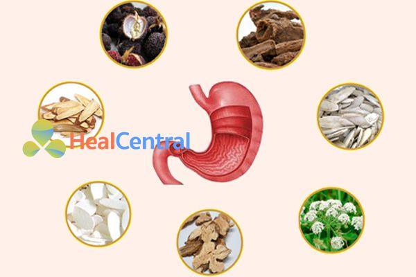 Đưa những dược liệu từ thiên nhiên vào điều trị viêm loét dạ dày-tá tràng có kết quả rất khả quan