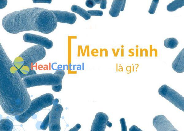Nên lựa chọn men vi sinh phù hợp nhất cho từng đối tượng