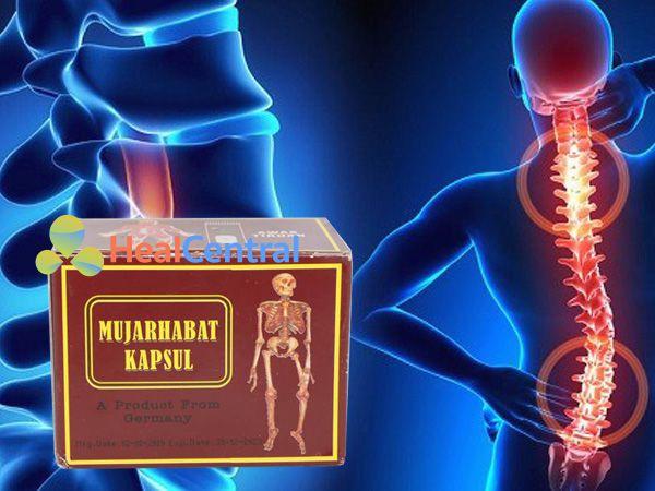 Mujarhabat kapsul - cải thiện tình trạng xương khớp