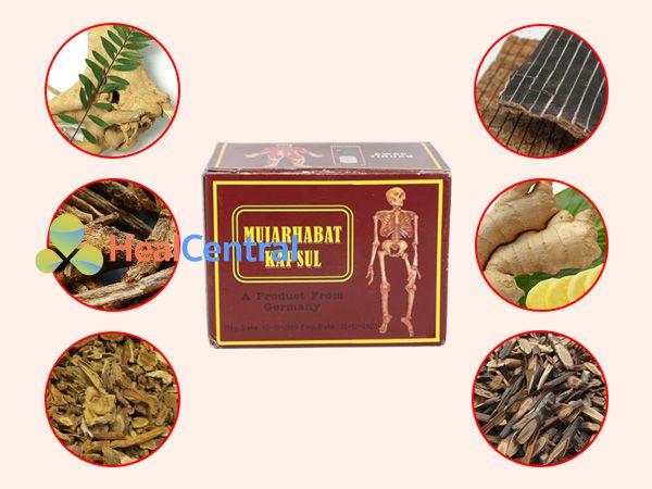 Các thành phần chính của Mujarhabat Kapsul