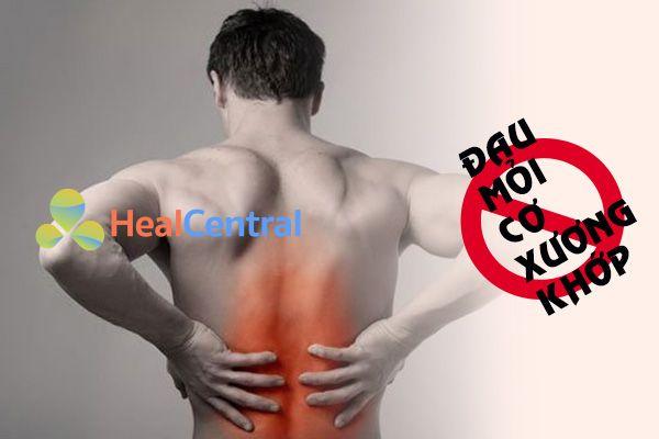 Nguyên nhân gây đau mỏi cơ xương khớp