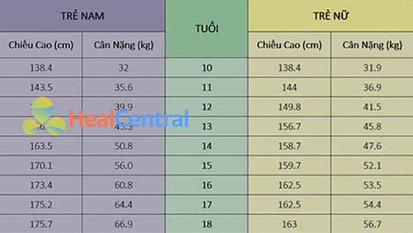 Bảng chiều cao và cân nặng chuẩn cho nam nữ trên 10 tuổi.