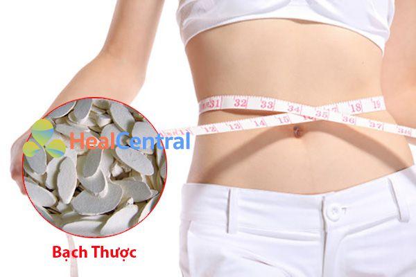 Bạch Thược giúp hỗ trợ giảm cân rất tốt